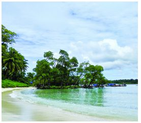 5 Fun Things To Do In The Islands Of Andamans