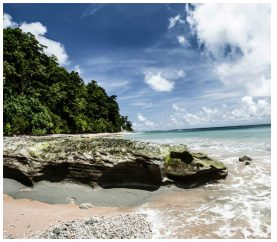 7 Interesting Things To Do In Andaman & Nicobar