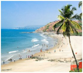 5 Coolest And Amazing Things To Do In Goa