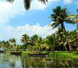 5 things to do when in Kerala