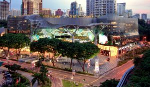 singapore-ion-orchard-shopping-mall-and-orchard-road