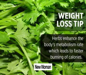 4 Herbs That Aid In Weight-Loss