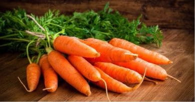 4 Important Health Benefits Of Carrots