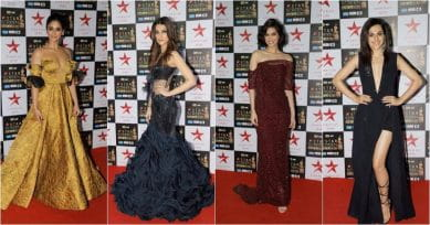 Star Screen Awards 2017: Celebs Dress To Their Best On The Red Carpet