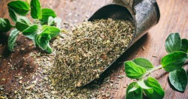 5 Shocking Health Benefits Of Oregano