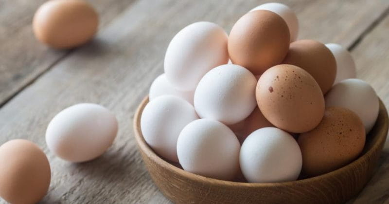 3 Important Health Benefits Of Having An Egg Everyday