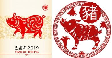 Feng Shui 2019: Here's How The Year Of The Pig Will Be For You