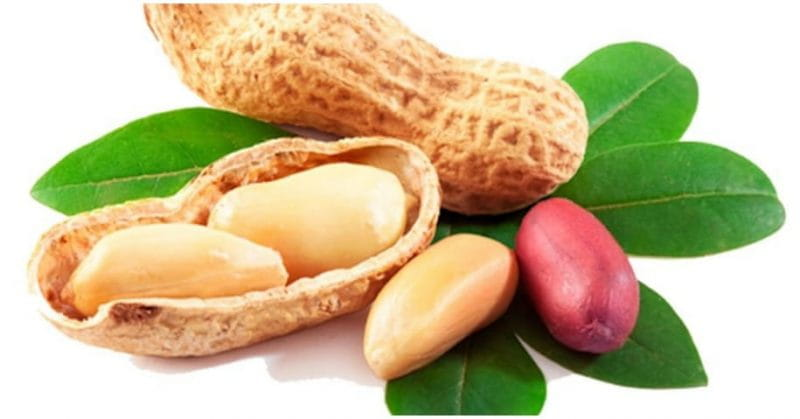 5 Health Benefits Of Groundnuts